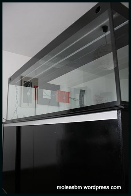 acuario13