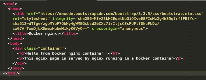 docker-nginx-custom-page-code